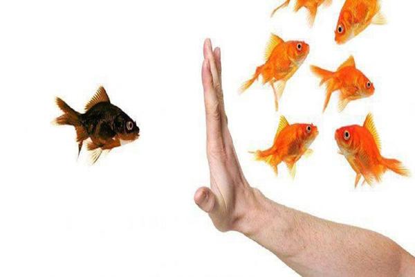 روش خودشناسی برای خودسازی