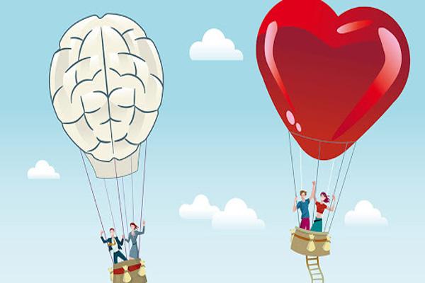 هوش عشقی چیست